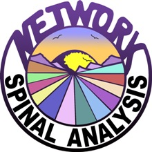 Network Spinal Analysis logo
