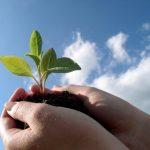 Change-Sustain